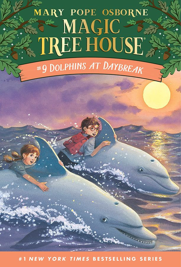 Lesson Plan 09 Dolphins At Daybreak